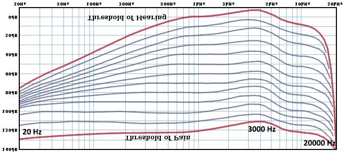fm-curve-rev